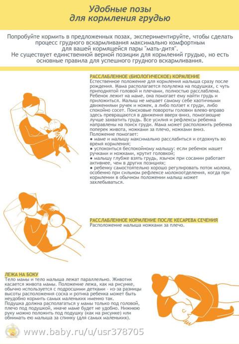 CDATA Вероничка - журнал на бэби.ру