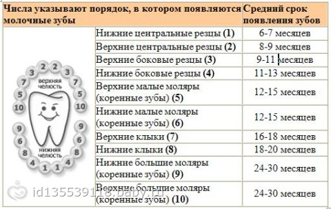 прививки в год: