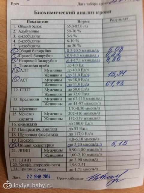 Показания анализа крови норма у беременных