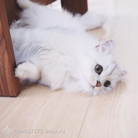 http://cs33.babysfera.ru/d/d/7/b/46646035.315452927.jpeg