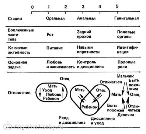 Фрейд стадии развития характер анальный тип