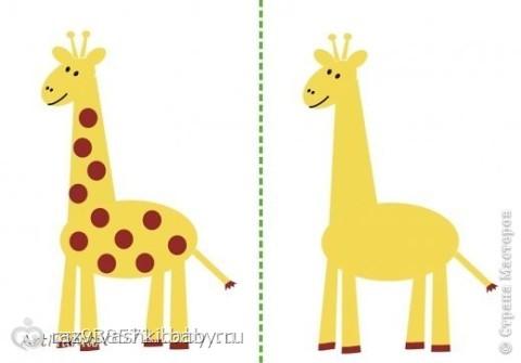 Картинка зебра на жирафе