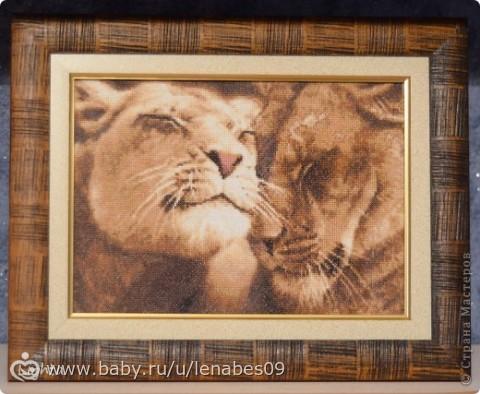 Вышивка влюбленный лев